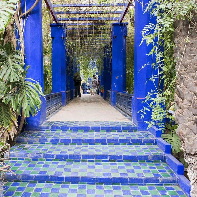 Cafe Near Jardin Majorelle: The Gardens Of Marrakech (Le Jardin Secret & Jardin Majorelle